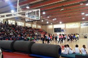 GymFestival a Senigallia (edizione 2013)