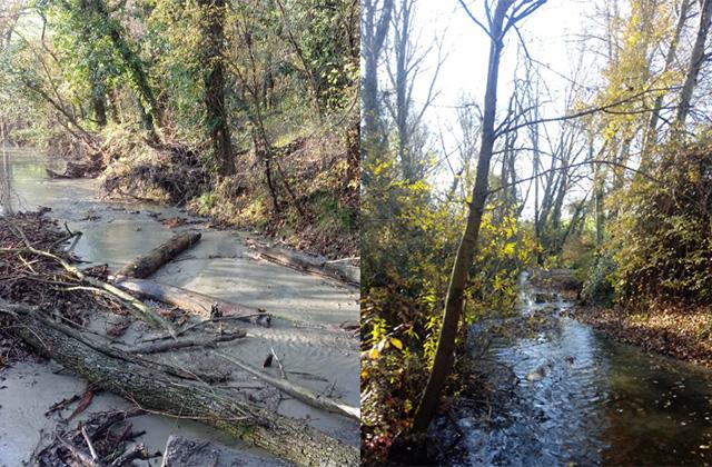 La situazione del fosso prima e dopo i lavori eseguiti dal Consorzio di Bonifica