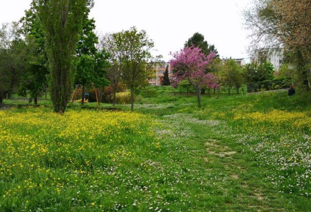 Primo maggio al parco Robinson con picnic, caccia al tesoro e giochi