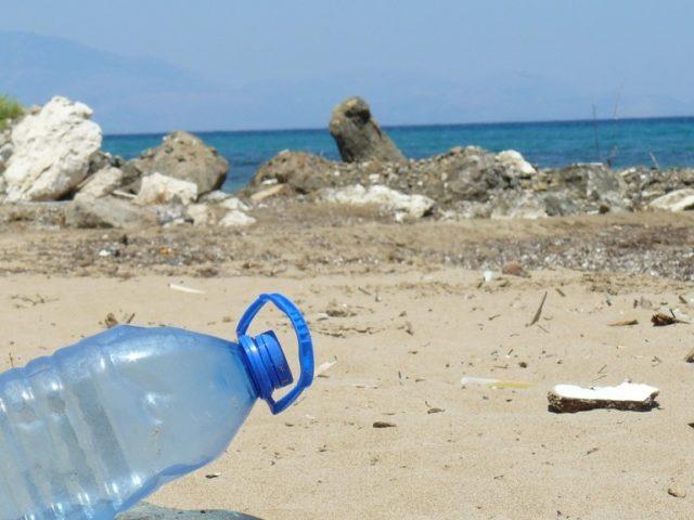 Spiaggia di Falconara: stop alla plastica. Cambia il regolamento per i cani
