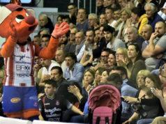 Troilo, in alto a dx, osserva un match del Pesaro