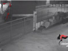 La telecamera inquadra i ladri in azione