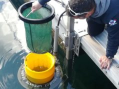 Seabin calato nel mare Adriatico