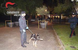 I carabinieri durante i controlli straordinari