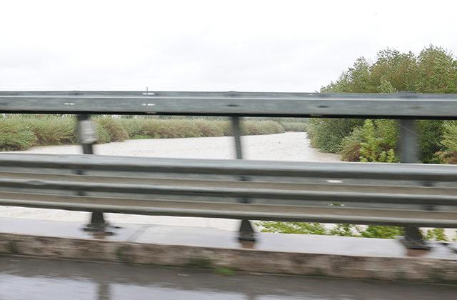 Il fiume Cesano a Senigallia, ingrossatosi per la pioggia