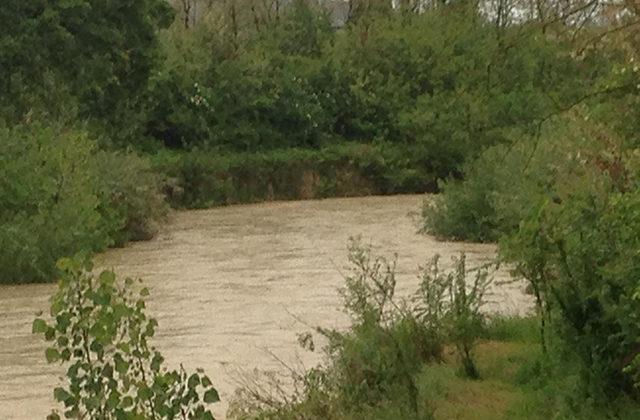 Il fiume Misa in zona Bettolelle, a Senigallia
