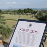 La vista da Scapezzano di Senigallia fino al monte Conero