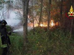 I Vigili del fuoco impegnati contro gli incendi boschivi