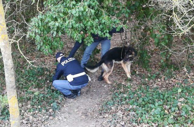 Controlli antidroga al parco Miralfiore di Pesaro da parte della polizia