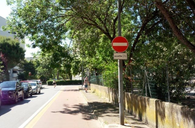 Rami pericolanti sulla pista ciclabile di via delle Rose, a Senigallia