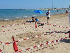 Recintata l'area in spiaggia, a Baia Flaminia, dove la tartaruga ha deposto le uova