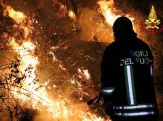 I Vigili del Fuoco impegnati sul fronte degli incendi boschivi