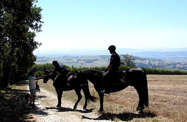 I controlli dei Carabinieri Forestali a cavallo sul monte Conero