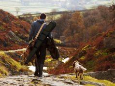 caccia, stagione venatoria