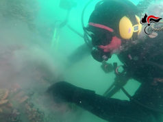 """Una delle immersioni subacquee per analizzare i resti del relitto della pirofregata """"Torquato Tasso"""" a largo di San Benedetto del Tronto"""