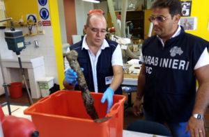 """Analizzati i resti del relitto della pirofregata """"Torquato Tasso"""" a largo di San Benedetto del Tronto"""