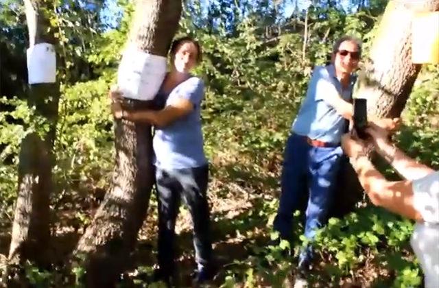 Il flash mob delle associazioni ambientaliste lungo il fiume Misa per salvare gli alberi