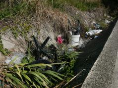 Rifiuti abbandonati lungo un fossato a Senigallia