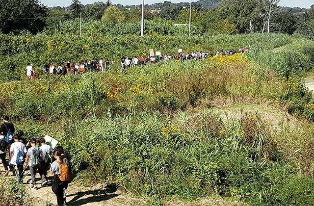 Lo sciopero per il clima promosso da Fridays For Future a Senigallia, lungo il fiume Misa