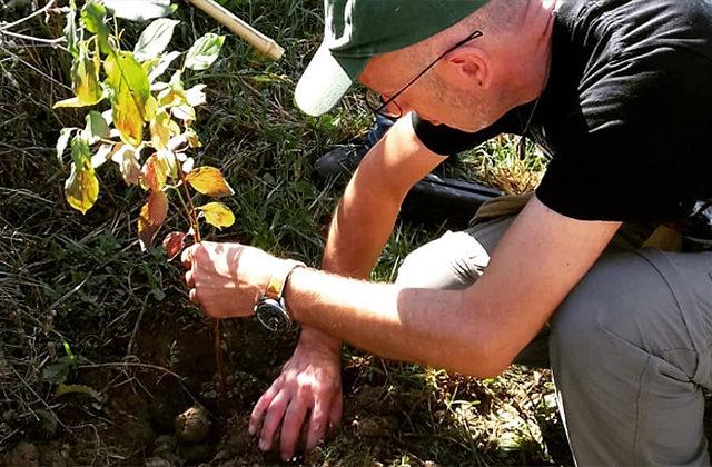 Alberi piantati a Senigallia dai ragazzi di Fridays For Future