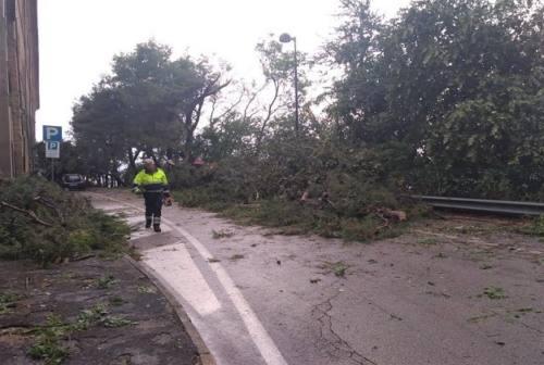 Dopo l'emergenza, Castelfidardo conta i danni del maltempo