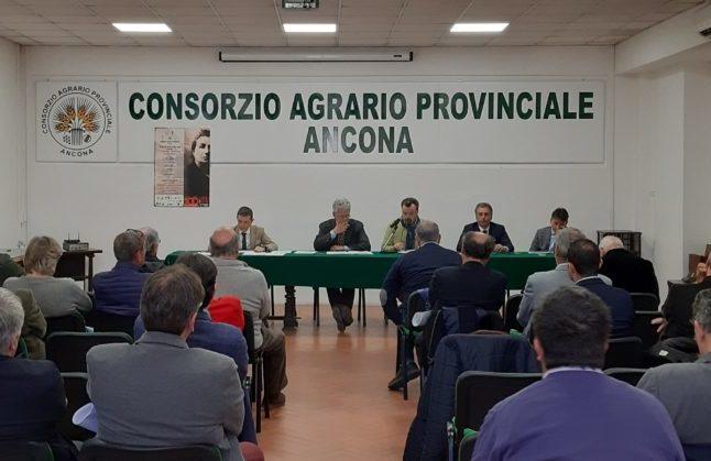 Numeri in crescita per il Consorzio agrario di Ancona