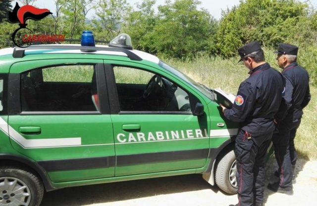 I carabinieri forestali di Pesaro Urbino