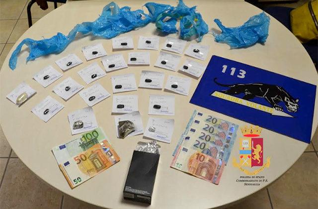 La droga sequestrata a Senigallia
