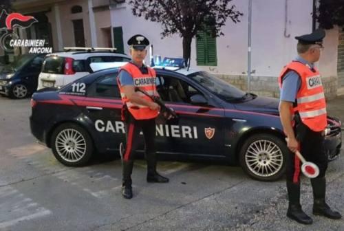 Alcol alla guida e droga: denunce e segnalazioni a Belvedere e Serra de' Conti