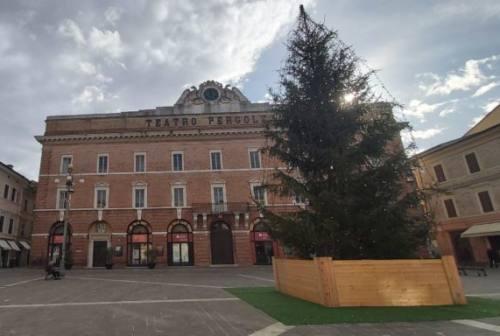 Jesi, albero di Natale di nuovo in piazza. L'opposizione: «Ci mancherà il mausoleo di Lenin»