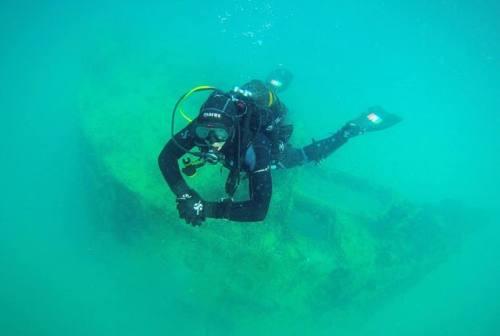 Nudibranchi e relitti: alla scoperta del mondo marino nei fondali del Conero con le immersioni