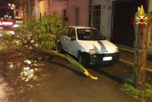 Tempesta di vento nella notte. Tetti scoperchiati e un container rovesciato al Porto. Colpita tutta la costa