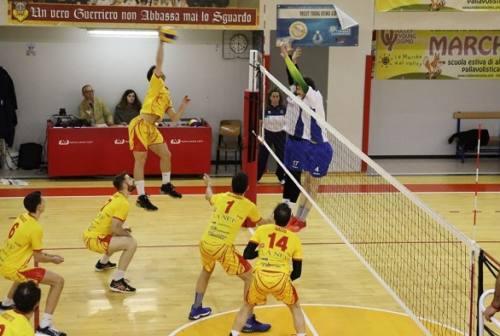 Nef Osimo Volley, coach Masciarelli deluso dal ko interno con Lucera