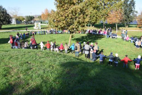 Festa dell'albero, 2000 studenti nelle Marche a lavoro per l'ambiente