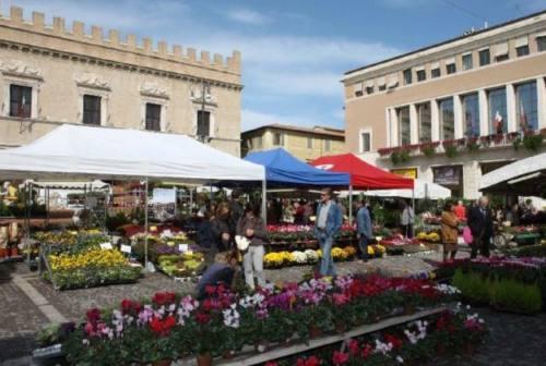 In piazza a Pesaro la 65^ edizione della festa dei fiori, tra contest e farfalle