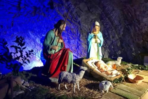 Natale, Sassoferrato si illumina: ecco l'albero più alto d'Italia