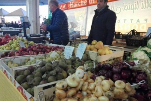 """Pane, olio, tartufi e formaggi di fossa: Fano pronta per """"Sapori e aromi d'autunno"""""""