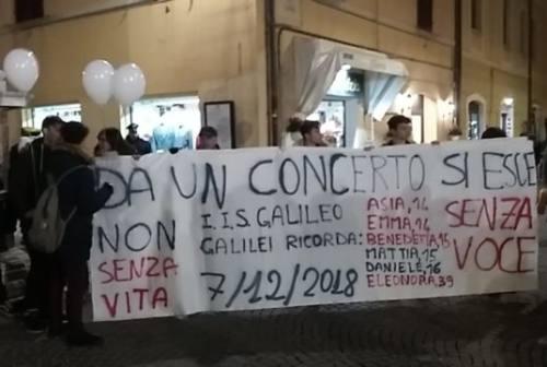 ScuolaZoo al Mamamia di Senigallia: «Ci si può divertire senza rischiare»