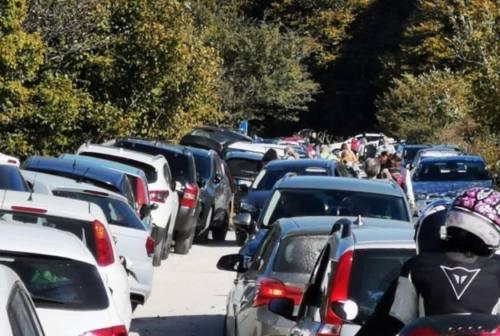 La faggeta di Canfaito invasa dalle auto. Baldini, Lac: «Sicurezza a rischio»
