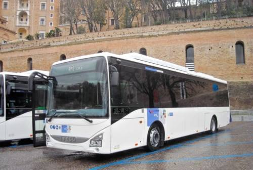 Sputi, spintoni, urla: controllore aggredito sul bus a Carpegna