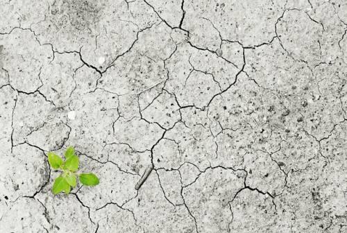 Ecosostenibilità: 32 Comuni marchigiani premiati a Roma
