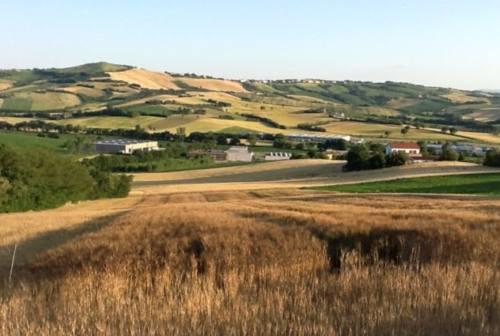 Osimo e Offagna, approvato l'accordo agroalimentare per la tutela del suolo