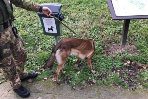 Pesaro, urina davanti a mamme e bimbi al Miralfiore: denunciato