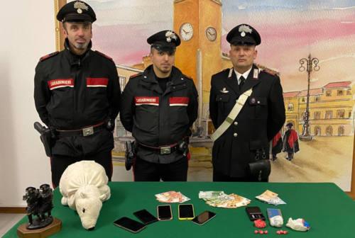 Cocaina nascosta dentro un orsacchiotto di peluche: due arresti a Fano