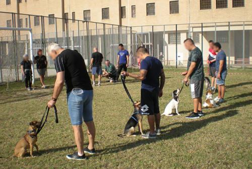 Ancona: cani in carcere tra educazione riabilitativa e pet therapy