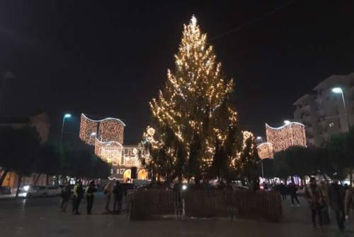 Civitanova Marche accende due alberi di Natale