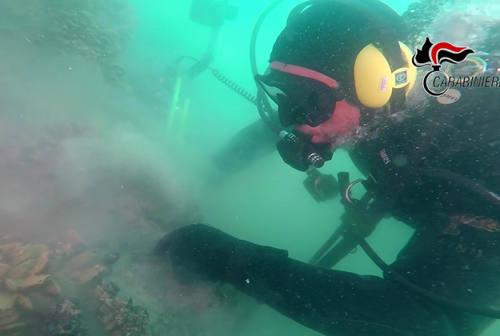 """Relitto """"Torquato Tasso"""", immersioni subacquee per valutare lo stato di conservazione"""