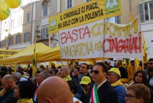 Fauna selvatica, oggi il giorno della protesta di Coldiretti a Montecitorio
