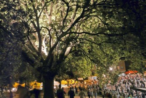Castelbellino, Festa della quercia al gran finale