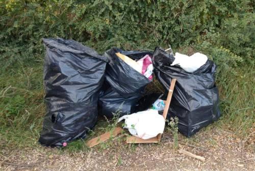 Castelfidardo, rifiuti abbandonati alla Selva. Il parco usato come discarica